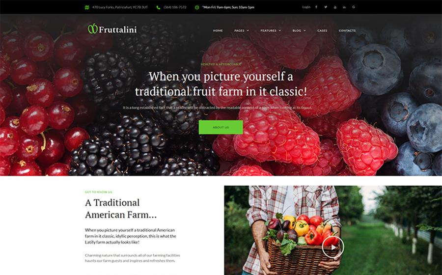 Fruttalini - Organic Fruit Farm Responsive WordPress Theme