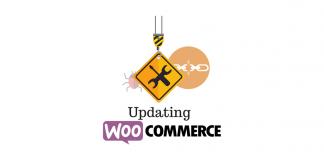 update WooCommerce