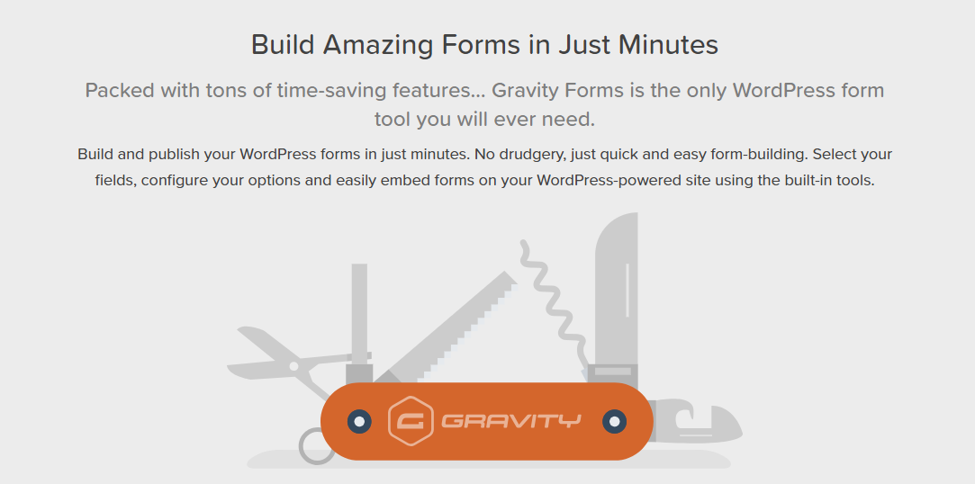 image for Gravity Forms WordPress Contact Form Plugin