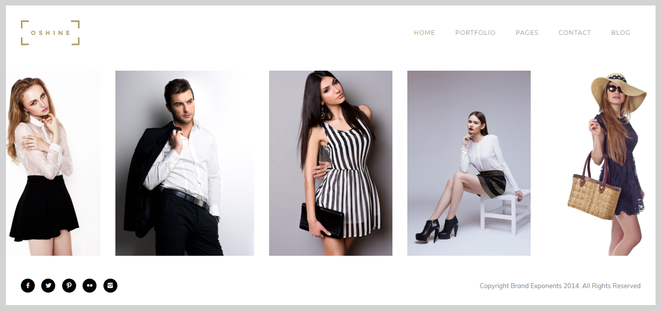 Screenshot of Oshine, WordPress Photography theme