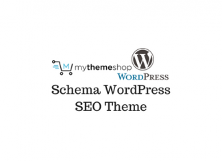 Header image of Schema WordPress SEO Theme